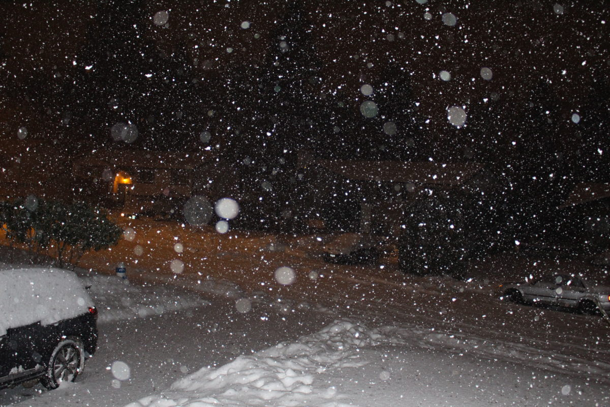 night snow fall