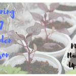Planning 2017 Garden Season – March Planting Update