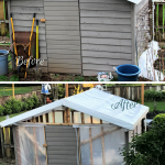 How to transform your shed into a greenhouse
