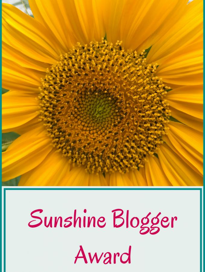 Sunshine Blogger Award Simple Family Crazy Life