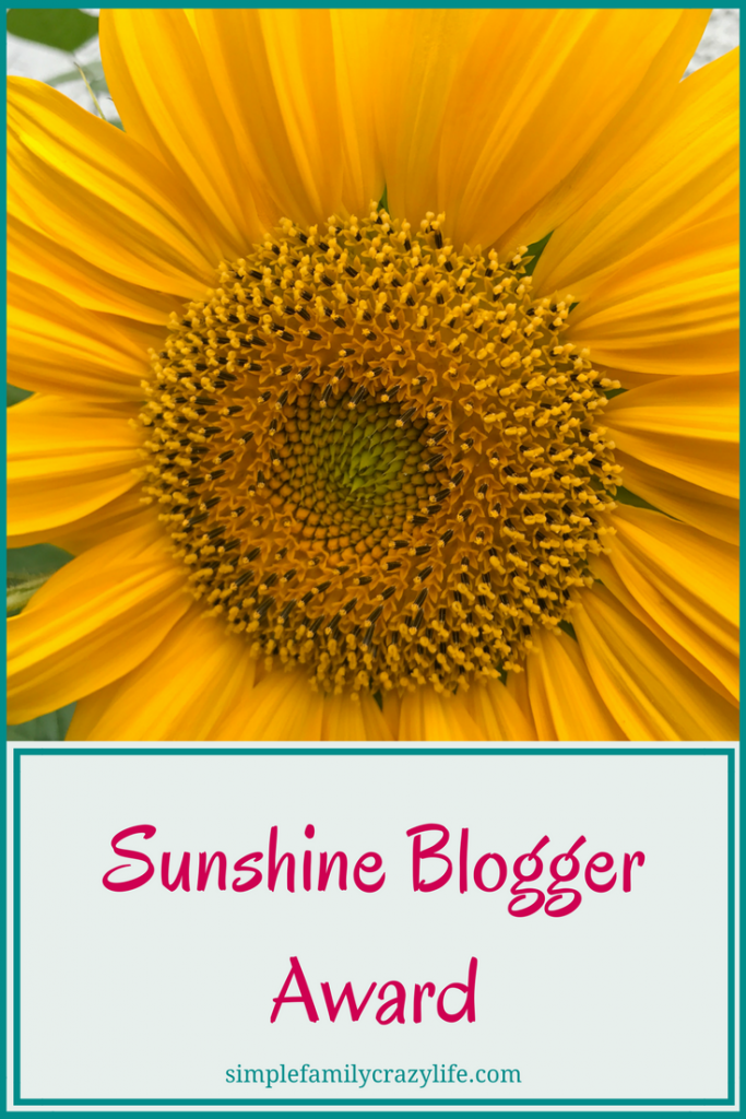 Sunshine Blogger Award Simple Family Crazy Life