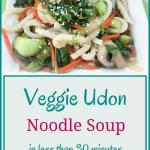 Veggie Udon Noodles Soup – Vegan