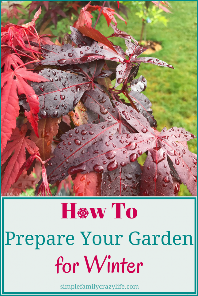How to prepare your garden for winter - garden fall maintenance