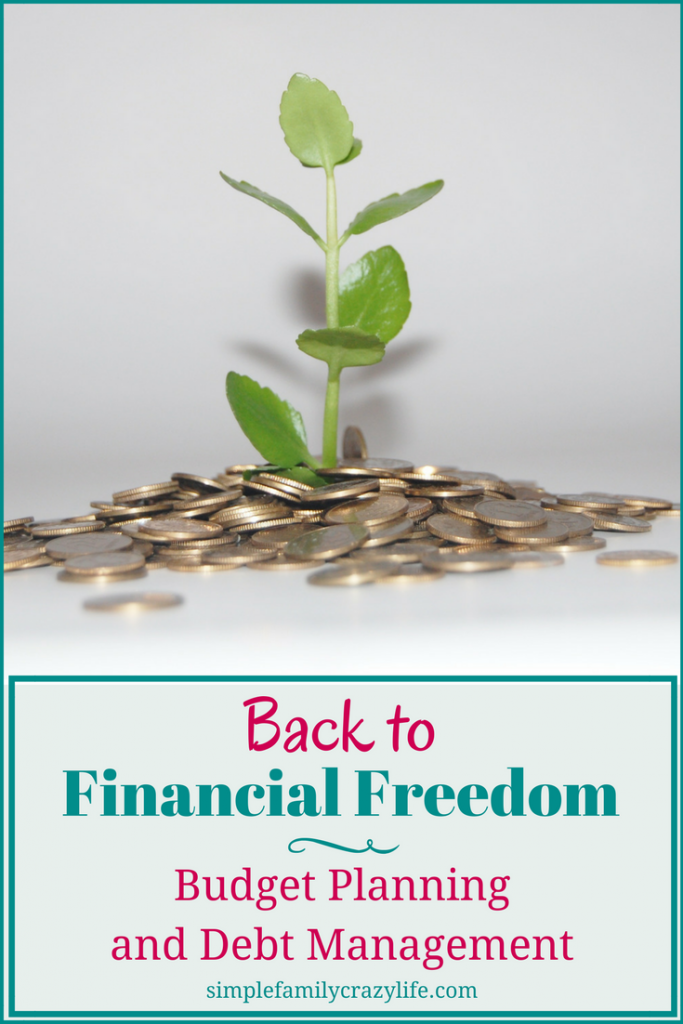 Back to Financial Freedom - The Beginning - Budget Planning and Debt Management