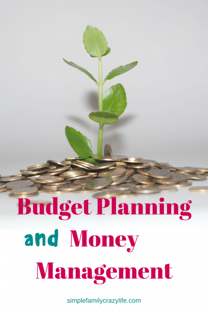 2017 year-in-review and blogging plans for 2018 - Budget Planning and Money Management Tips