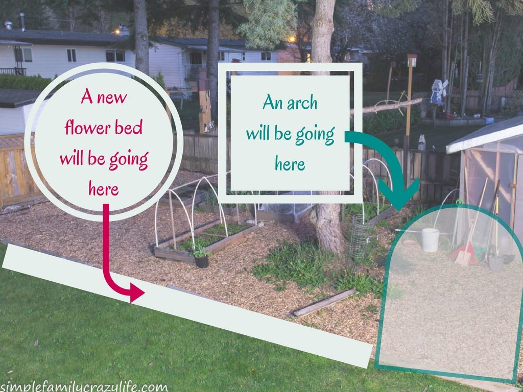 Yard Transformation Challenge 2018 - planning the backyard